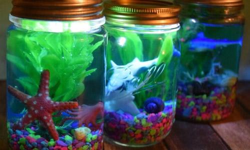 Мой первый аквариум