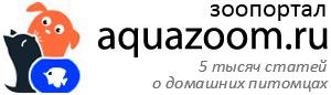 Зоопортал aquazoom.ru